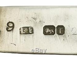 Antique Victorian Sterling Silver and Enamel Vesta Case by Lawrence Emanuel 1891