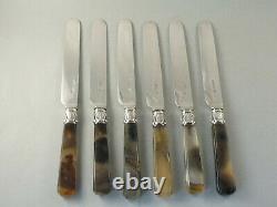 Superbe Set 6 Victorian Silver & Agate Handled Dessert / Fruit Knives. 1840